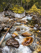 Beautiful Galatea Creek. Hike to Lillian Lake (7.5 miles round trip with 1614 gain) or on to Galatea Lakes (10 miles RT with 2214 ft gain) in Spray Valley Provincial Park, from H40 south of Kananaskis Village, in Kananaskis Country, Canadian Rockies, Alberta. Kananaskis Country is a park system west of Calgary. This panorama was stitched from 6 overlapping images.