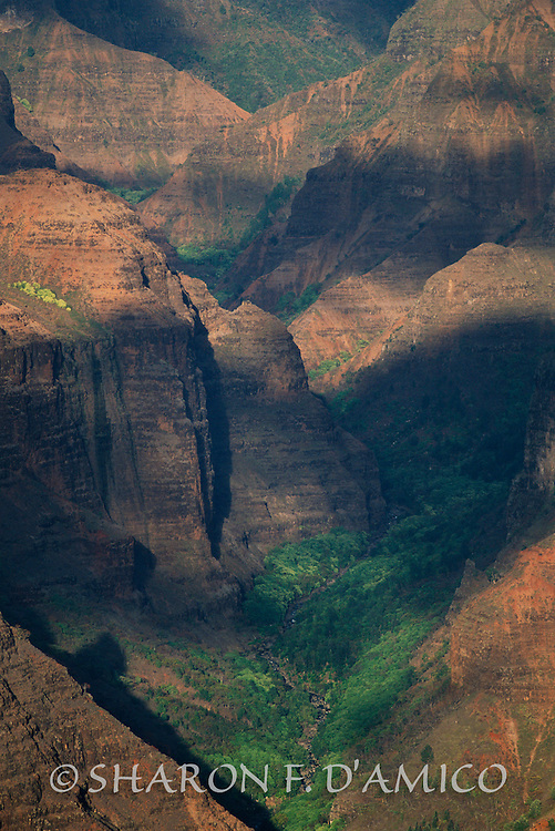 CANYON LIGHT & SHADOWS, KUAI, HAWAII 80610.JPG