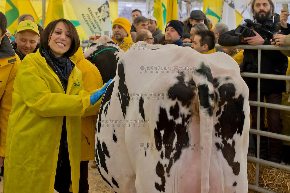 """Roma 6 Febbraio 2015<br /> Manifestazione in Campidoglio, per «difendere il latte italiano», organizzato dalla Coldiretti, e l'Associazione italiana allevatori che  hanno portato le  mucche  nelle piazze italiane per sensibilizzare opinione pubblica e istituzioni sulla crisi del settore lattiero-caseario. Nunzia De Girolamo ex ministro dell'Agricoltura<br /> Rome February 6, 2015<br /> Demostration  at the Capitol, to """"defend the Italian milk"""", organized by Coldiretti, and the Association of Italian farmers who brought the cows in the Italian squares to sensitize public opinion and institutions on the crisis of the dairy sector. Nunzia De Girolamo former Minister of Agriculture"""