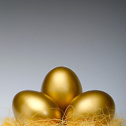 Golden eggs in a nest to signify savings or a coming to fruition.