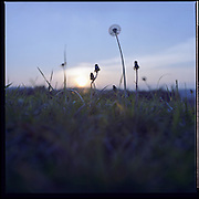 Hasselblad 500 C/M - Landscape collection