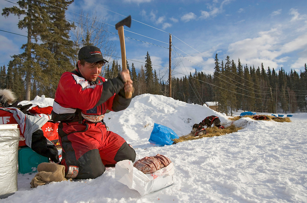 USA, Alaska, Anvik, Musher Ramey Brooks cuts up frozen meat for dogs using an axe at Anvik checkpoint along Yukon River during 2005 Iditarod sled dog race.