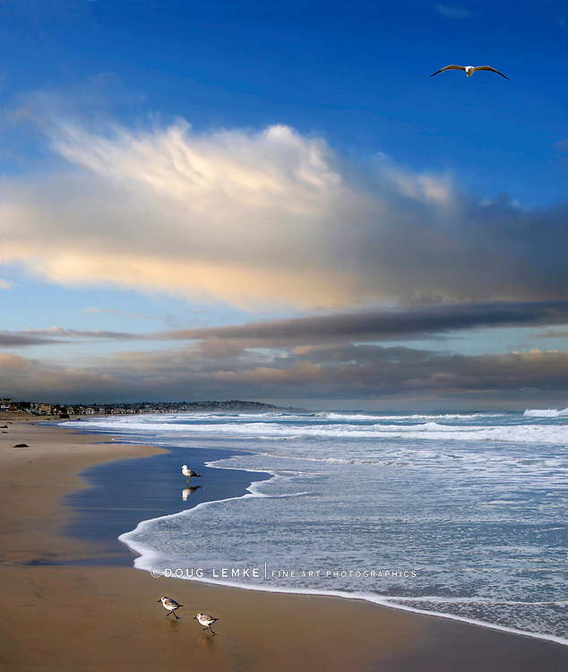 Beautiful Ominous Storm Clouds Overhead As Shore Birds Dodge The Surf On A Sandy Southern California Beach In Early Morning Along The Pacific Ocean, San Diego, California