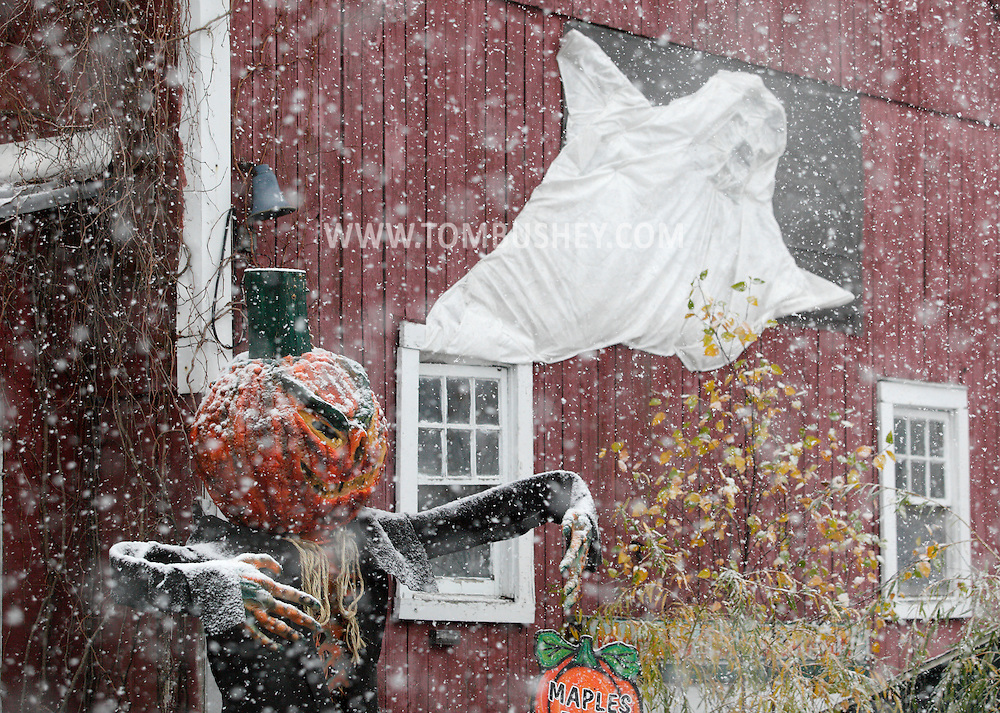 Middletown, New York - Halloween decorations, including a scarecrow, get covered in snow during a snowstorm on Oct. 29, 2011.