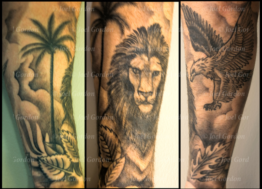 Palm Tree, Lion and Eagle on his Arm Sleeve.<br /> <br /> Body art or tattoos has entered the mainstream it is no longer considered a weird kind of subculture.<br /> <br /> &quot;According to a 2006 Pew survey, 40% of Americans between the ages of 26 and 40 have been tattooed&quot;.
