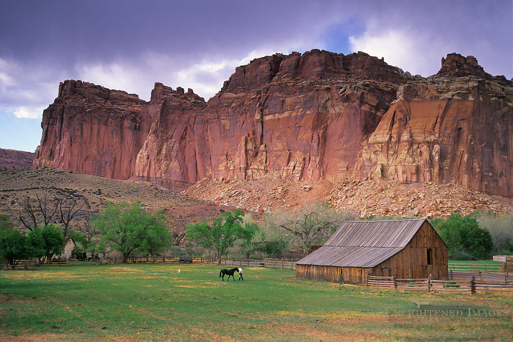 Barn and red cliffs in the Fruita Historic Distrcit, Capitol Reef National Park, UTAH
