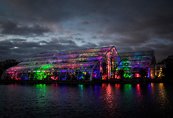 © Licensed to London News Pictures. 30/11/2017. London, UK. The Glashouse is filled with Christmas colour at RHS Wisley Gardens. Trees and plants are illuminated at Royal Horticulture Society Wisley Gardens for the Christmas Glow. Hundreds of different lights can be seen when following the trail throughout the gardens opening 1 December 2017 – 3 January 2018. Photo credit: Peter Macdiarmid/LNP