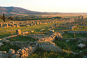 MOROCCO, ROMAN, VOLUBILIS Roman City, 1st-3c.AD; streets and Arch