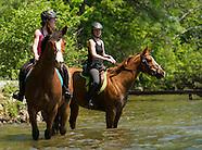 Horses 1Jun13