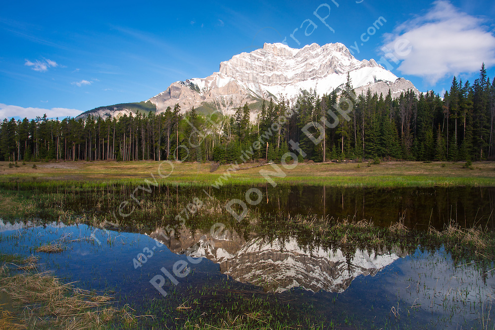 Reflections of Cascade mountain in a pool on the Minnewanka loop in Banff National Park<br /> <br /> &copy;2014, Sean Phillips<br /> http://www.RiverwoodPhotography.com