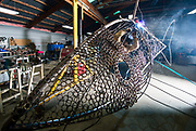 David Griesmyer, owner of DG Welding and Design in Malta, Ohio works on one of nine giant fish that he plans to install in school formation along the Muskingham River near McConnelsville, Ohio. The sculpture seeks to promote tourism through the arts. Ohio University is providing strategic planning support to DG Welding and Design and other regional businesses through the LIGHTS program which provides expertise, training and resources to the regional workforce, entrepreneurs, companies and local communities. ©Ohio University/ Photo by Ben Siegel