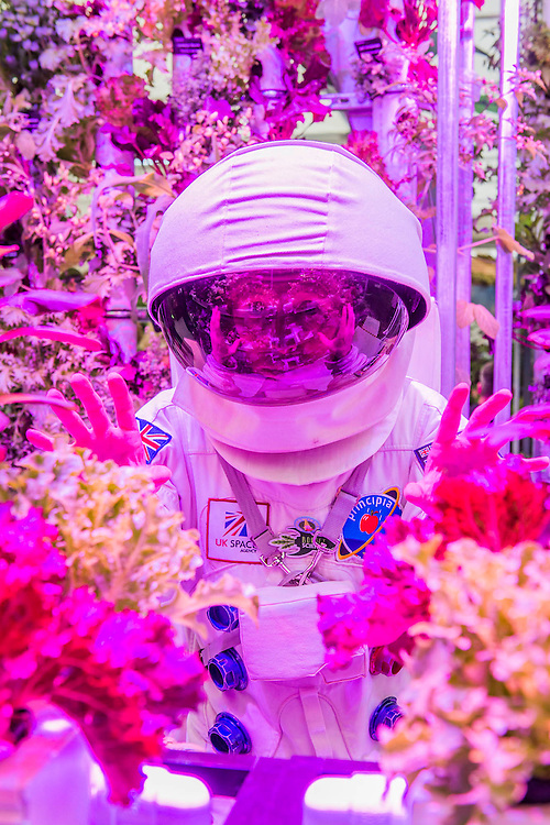 Spaceman and hydroponic plants on the Rocket Science stand - RHS Chelsea Flower Show, Chelsea Hospital, London UK, 18 May 2015. Guy Bell, 07771 786236, guy@gbphotos.com