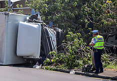 Auckland- Truck rolls and ends in trees, Mt Wellington