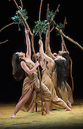 Cloud Gate Dance Theatre. Sadler's Wells