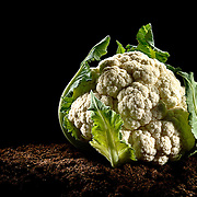 Concept photo of a cauliflower