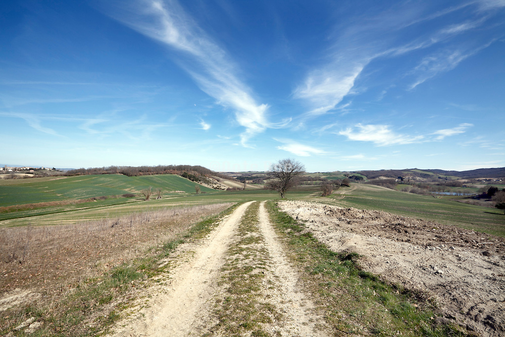 tractor path between agricultural fields in Razes district of the Languadoc France