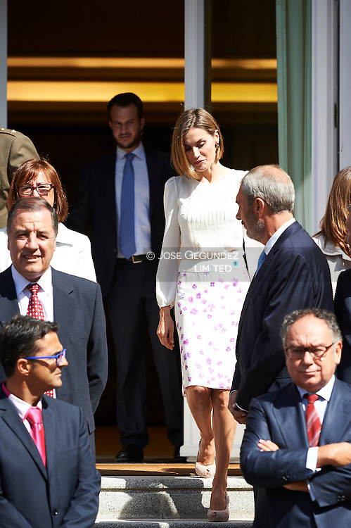 Queen Letizia of Spain attends an audiences with a representation of the 'Spanish Federation for Rare Diseases FEDER' and 'Solidarity Network Entities' collaborating with FEDER at Palacio de la Zarzuela on September 3, 2015 in Madrid