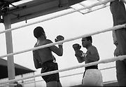 Ali vs Lewis Fight, Croke Park,Dublin.<br /> 1972.<br /> 19.07.1972.<br /> 07.19.1972.<br /> 19th July 1972.<br /> As part of his built up for a World Championship attempt against the current champion, 'Smokin' Joe Frazier,Muhammad Ali fought Al 'Blue' Lewis at Croke Park,Dublin,Ireland. Muhammad Ali won the fight with a TKO when the fight was stopped in the eleventh round.<br /> <br /> Photo as Lewis and Ali look for an opening to attack.