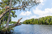 Black Creek, Florida