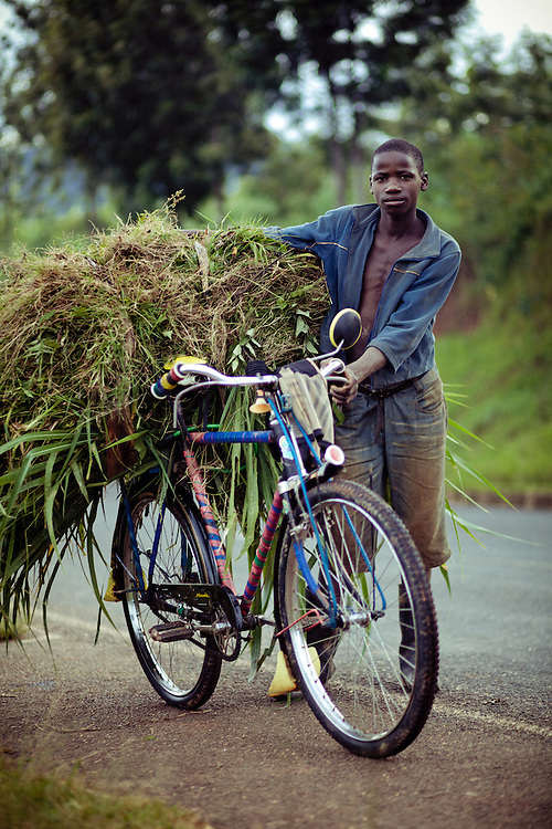 Murwanashyaka Theoneste, aged 16. He works for someone else clearign weeds and using them to feed cattle, and therefore the bike doesn't belong to him. Spends about 5 hours a day on the bike.