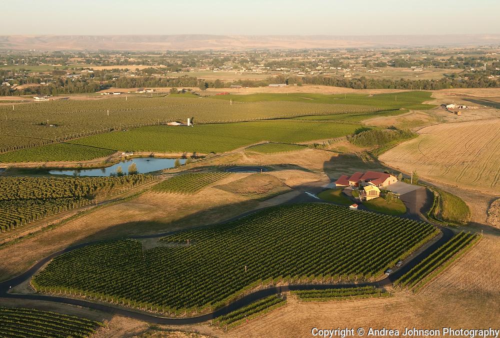 Aerial views over Walla Walla vineyards, Eastern Washington