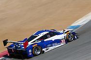 #01 Chip Ganassi Racing with Felix Sabates Riley DP: Joey Hand, Scott Pruett