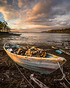 A dory filled with nets is pulled up on shore at Lookout Point in Harspwell. The setting sun casts a golden glow on the boat and dramatic clouds fill the sky during a departing storm.