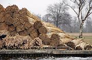 Nederland, Belt-Schutsloot, 24-3-2008..Bundels opgebonden riet in het riettelersgebied De Wieden bij Giethoorn klaat voor transport naar de rietdekker. Riettelers vrezen het einde van hun beroepsgroep als ze alleen nog in de zomer mogen snijden. Het riet is dan van slechte kwaliteit. De regering wil het rietsnijden in het vroege voorjaar verbieden om de natuur niet te verstoren. Ook concurentie uit het buitenland maakt het in deze beroepsgroep moeilijk te werken...Foto: Flip Franssen