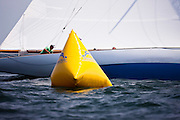Joyant sailing in the Opera House Cup Regatta.