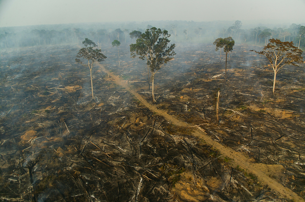 December 7, 2003. Fires are set to clear the rainforest jungle for soy plantations around Santarem, Para State, Brazil. ©Daniel Beltra