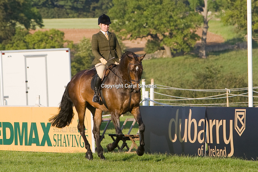 Bushmills    Novice Working Hunter   Bramham HT 2011 , Adele Hanson