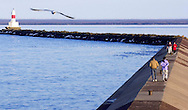 A gull glides over Lake Superior as people stroll along the upper harbor breakwater in Marquette, Michigan.