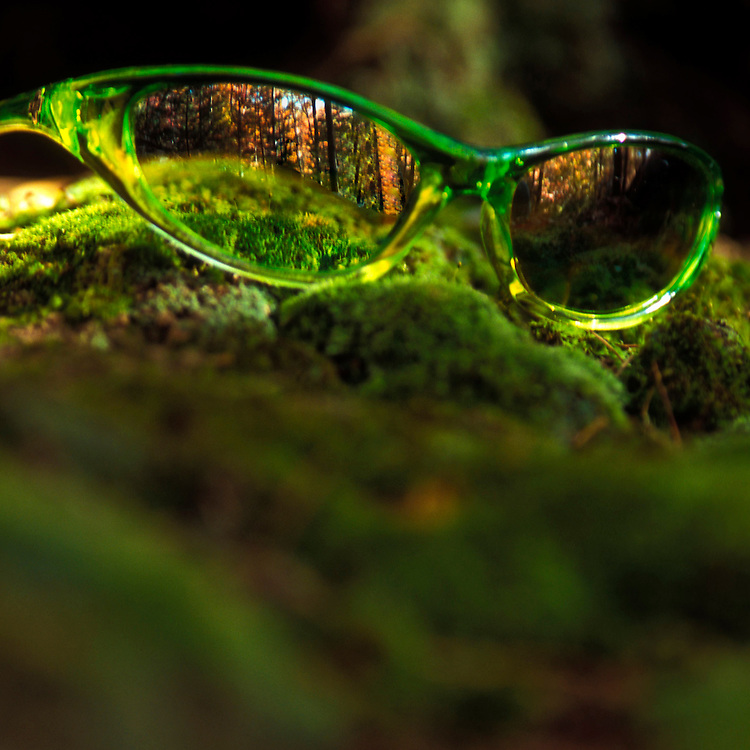 Green sunglasses product shot.