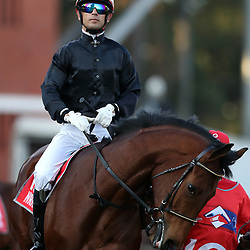 (Jockey) Anthony Delpech during RACE 7 THE VODACOM DURBAN JULY (Grade 1) - 2200m – R4 250 000 at THE VODACOM DURBAN JULY at Greyville Racecourse in Durban, South Africa on 1st July 2017<br /> Photo by:  Steve Haag Sports