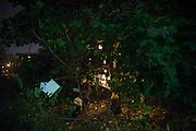 SOPHIE CADIEUX, LAURENCE DAUPHINAIS<br /> JUSTE PARCE QUE C&rsquo;EST BEAU (ENTRETIENS BOTANIQUES), Champ des possibles,<br /> avec Laurence Dauphinais, Alexis Langevin-T&eacute;trault<br /> Collaborateur: Alexander MacSween.