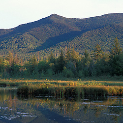 Cherry Mountain as seen from Cherry Pond.  Pondicherry National Wildlife Refuge.  White Mountains.  National Natural Landmark. Jefferson, NH