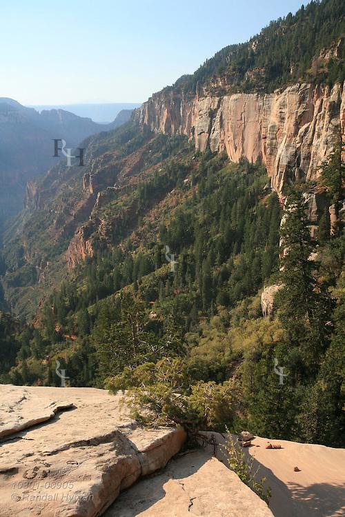 Views along North Kaibab trail from Coconino Overlook to Supai Tunnel; Grand Canyon National Park, Arizona.