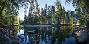 Super high resolution, composite panoramic of the tranquil waters of  the Merced River in Yosemite National Park, CA