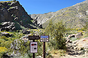 Tahquitz Canyon Trail Head