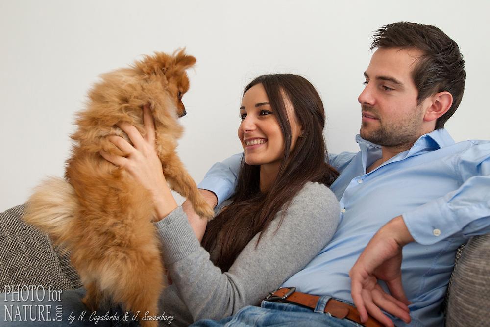 Photo for Dog - Votre chien en Photo photofordog.com