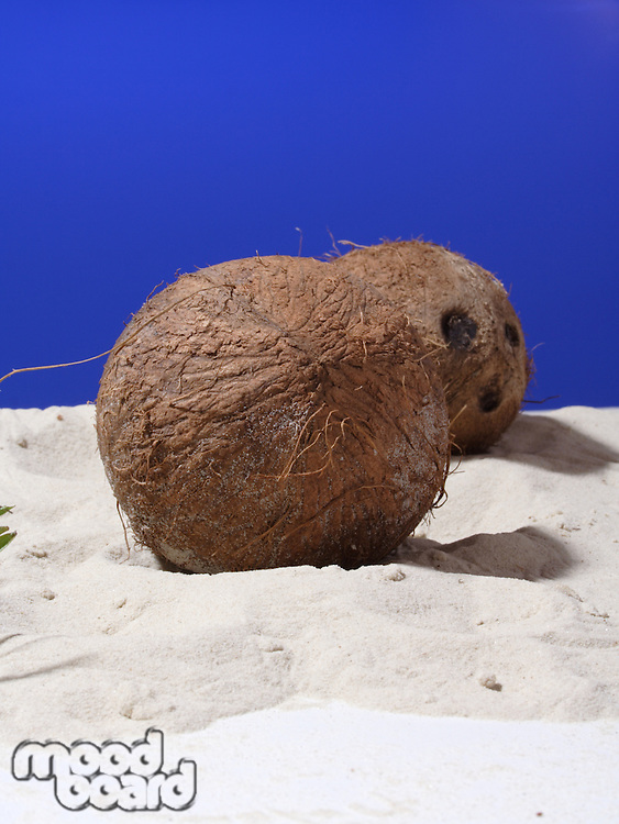 Close up of coconut on sand