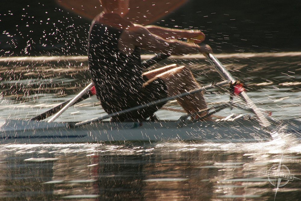 Man rowing scull.