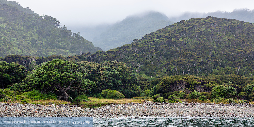 Little Barrier Island.  Mist and rain receeding to white, across ridges of New Zealand native bush.  Sea and stones in foreground.