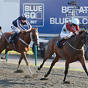 Top Frock and Adam Kirby winning the 5.55 race