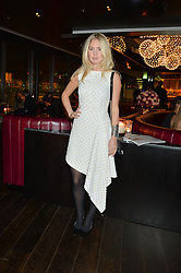 MARISSA MONTGOMERY at the Launch Of Osman Yousefzada's 'The Collective' 4th edition with special guest collaborator Poppy Delevingne held in the Rumpus Room at The Mondrian Hotel, 19 Upper Ground, London SE1 on 24th November 2014, sponsored by Storm models and Beluga vodka.