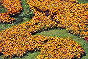 Nederland, the Netherlands, Nijmegen, 12-7-2018Het stadswapen van de stad gevormd door bloemen, al sinds de jaren 50 een vast beeld op deze plek . FOTO: FLIP FRANSSEN