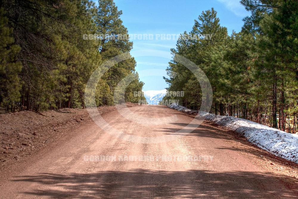 Route 66 - Williams, Arizona