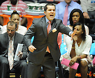 "Mississippi Lady Rebels head coach Matt Insell reacts against Kentucky at the C.M. ""Tad"" Smith Coliseum in Oxford, Miss. on Monday, February 23, 2015."