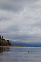 """Lake Tahoe 2"" - This photograph of a cloudy day was photographed from a small fishing boat on the West shore of Lake Tahoe."