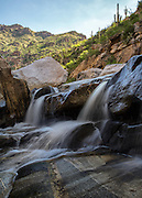 Cascades along Bear Creek, Bear Canyon, Tucson, early morning light